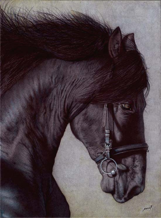 horse-drawing-in-ballpoint-pen