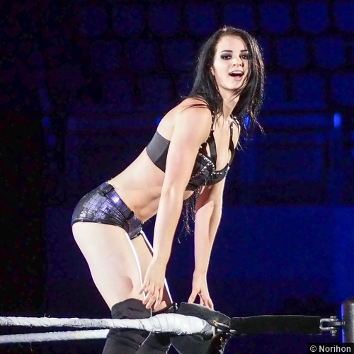 wwe_diva_paige_hot-pictures-06